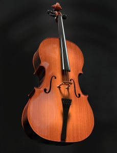 cello-celloles_muziekles_waterland