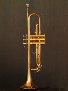 trompet_trompetles_muziekles_waterland