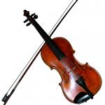 Vioolles muziekles viool Waterland Purmerend