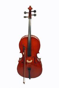 Celloles Purmerend Muziekles Waterland